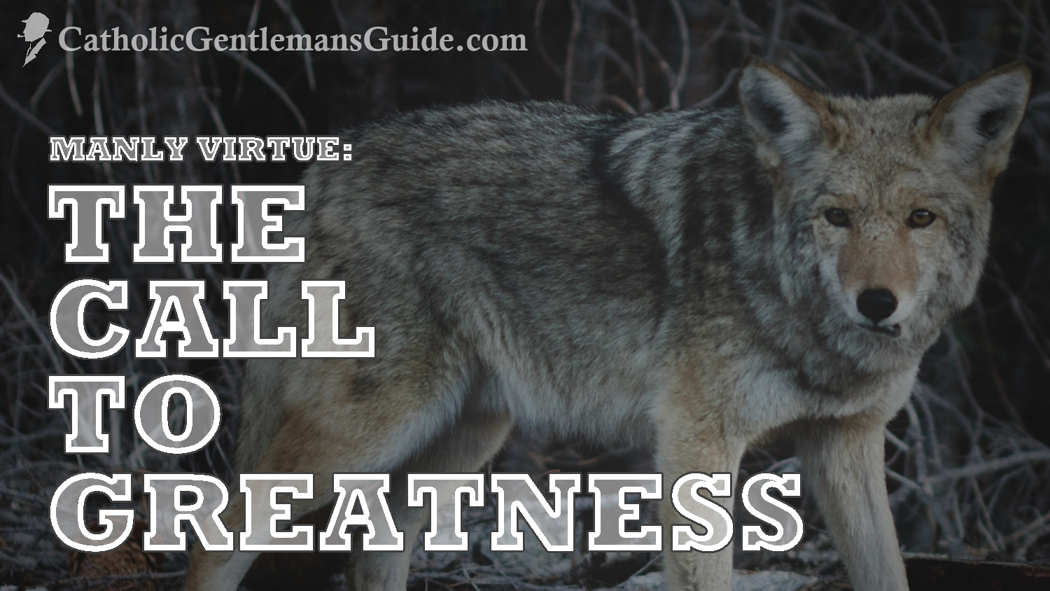 manly-virtue-the-call-to-greatness